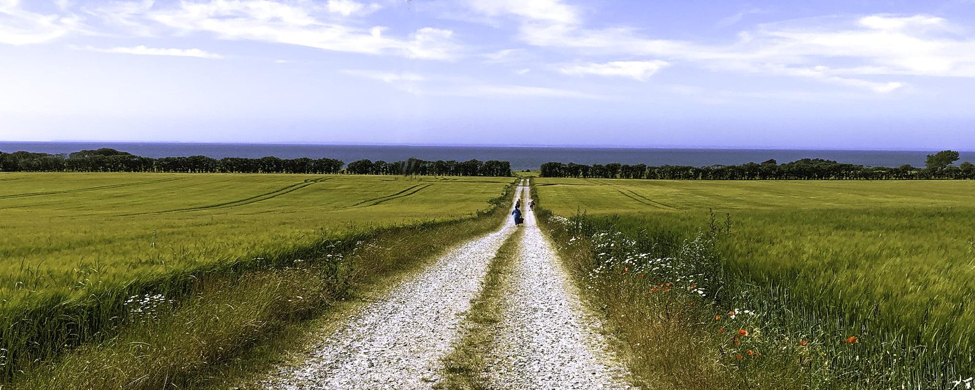 vej til stranden